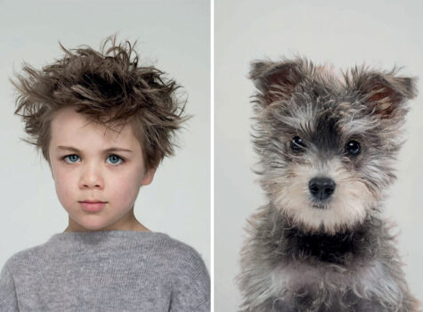 ressemblance homme chien