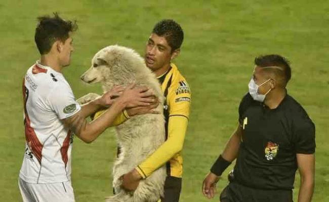 cachito bolivie football