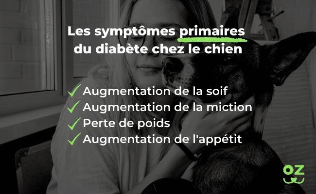 diabète chien symptômes primaires